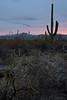 AZ-2010-006: Tucson, Pima County, AZ, USA