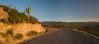 AZ-2007-020: , Pima County, AZ, USA