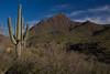 AZ-2010-040: , Yavapai County, AZ, USA
