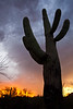 AZ-2011-068: Tucson, Pima County, AZ, USA