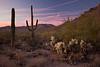 AZ-2010-135: Tucson, Pima County, AZ, USA