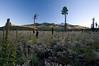 AZ-2008-055: Coconino National Forest, Coconino County, AZ, USA
