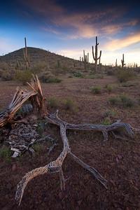 AZ-2010-061: Tohono O'Odham Indian Reservation, Pinal County, AZ, USA