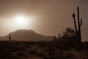 AZ-2013-054: Sacaton Mountains, Pinal County, AZ, USA