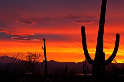 AZ-2010-013: Tucson, Pima County, AZ, USA