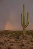 AZ-2012-026: , Pima County, AZ, USA