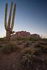 AZ-2007-040: Lost Dutchman State Park, Pinal County, AZ, USA