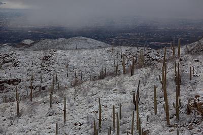 AZ-2011-025: Redington Pass, Pima County, AZ, USA