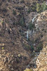 AZ-2013-013: Mount Lemmon, Pima County, AZ, USA