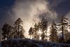 AZ-2013-024: Mount Lemmon, Pima County, AZ, USA