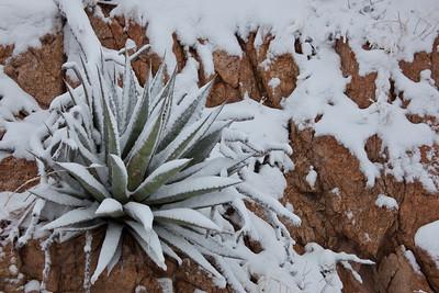 AZ-2011-014: Redington Pass, Pima County, AZ, USA