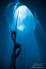 Looking up rope with ascenders from inside a deep moulin ice cave in teh Matanuska Glacier, Alaska