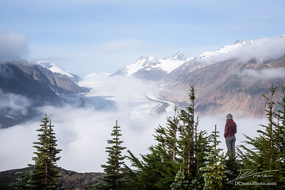 Young blonde woman standing among several evergreen trees overlooking the Salmon Glacier on a foggy morning in the Boundary Ranges of British Columbia, Canada