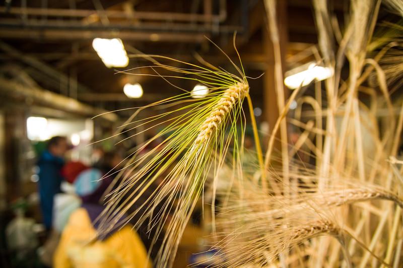 Photo by Trav Williams, Broken Banjo Photography, www.BrokenBanjo.net