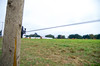 Photo by Trav Williams, Broken Banjo Photography: ww.BrokenBanjo.net