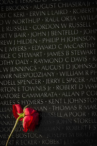 """""""Weeping Rose"""" - Vietnam Memorial Wall, Washington, D.C.   Recommended Print sizes*:  4x6      8x12     12x18     16x24     20x30     24x36 *When ordering other sizes make sure to adjust the cropping at checkout*  © JP Diroll 2014"""