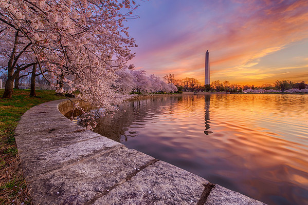 """Pretty in Pink"" - Washington Monument, Washington, D.C.   Recommended Print sizes*:  4x6  