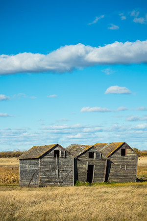 Weathered Grain Bins