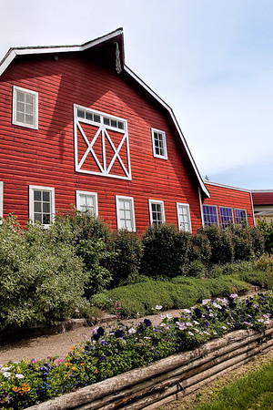 Red Barn behind flower beds