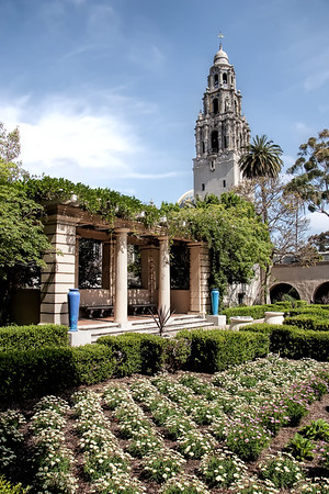 Flower garden and famous tower at Balboa Park, San Diego