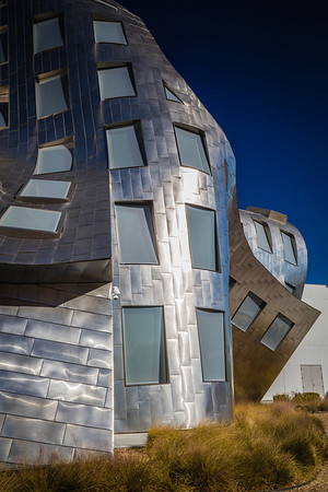 The Cleveland Clinic Lou Ruvo Center for Brain Health