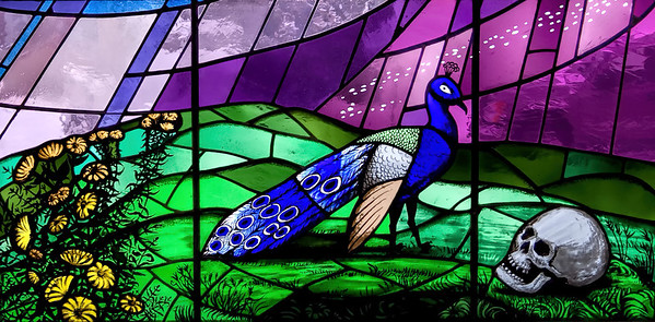 Stained Glass of a Peacock and Skull