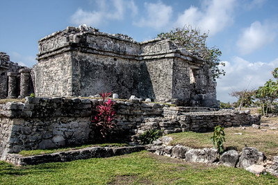 Tulum Palace or Home