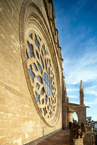 Detial of the rose window on the facade of Santa Maria de la Sede Cathedral, Seville, Spain