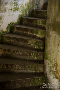 Moss covered old concrete stairs winding up