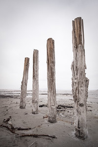 Four wood posts standing in mud of the Great Salt Lake