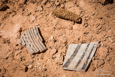 Potsherds and dried maize