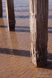 Wood Posts in Great Salt Lake