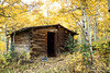 Small cabin in the woods in Autumn