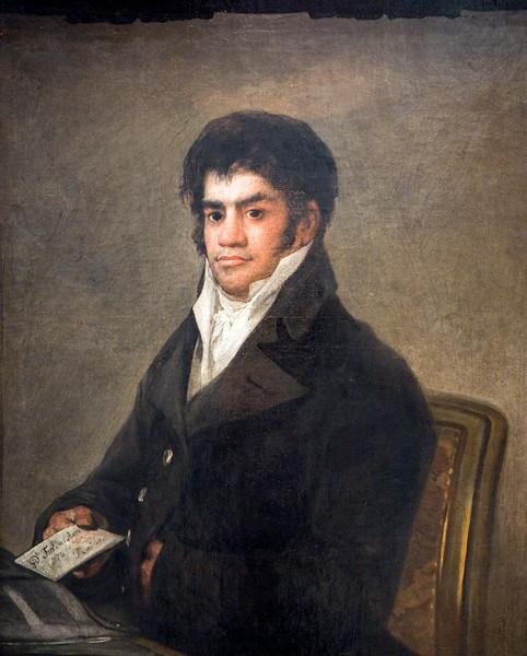 Portrait of Francisco del Mazo, by Francisco de Goya (circa 1820). Goya Museum of Castres (France)