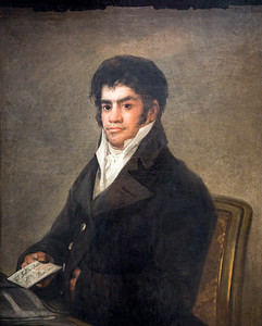 Portrait of Francisco del Mazo, by Francisco de Goya (circa 1820). Goya Museum of Castres (France)