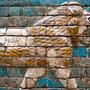 Lion in glazed ceramic from the processional way of Ishtar Gate (Babylon), Pergamon Museum, Berlin, Germany