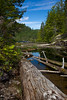 BC-2011-094: Teakerne Arm, Desolation Sound, BC, Canada