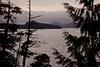 BC-2010-149: Tofino Inlet, Vancouver Island, BC, Canada