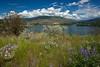 BC-2011-131: Okanagan Lake, Okanagan, BC, Canada
