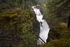 BC-2008-064: Little Qualicum Falls Provincial Park, Vancouver Island, BC, Canada