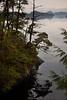 BC-2010-166: Tofino Inlet, Vancouver Island, BC, Canada