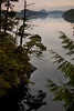 BC-2010-165: Tofino Inlet, Vancouver Island, BC, Canada