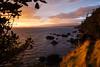 BC-2010-097: Denman Island, Northern Gulf Islands, BC, Canada
