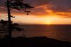 BC-2010-094: Denman Island, Northern Gulf Islands, BC, Canada