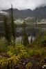 BC-2010-153: Tofino Inlet, Vancouver Island, BC, Canada