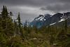 BC-2012-061: Bella Coola, Central Coast, BC, Canada