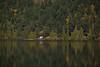 BC-2010-167: Cameron Lake, Vancouver Island, BC, Canada