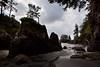 BC-2010-204: Cape Scott Provincial Park, Vancouver Island, BC, Canada