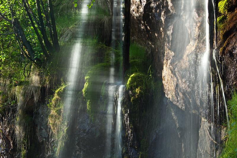 BC-2011-141: Mount Revelstoke National Park, Rockies, BC, Canada