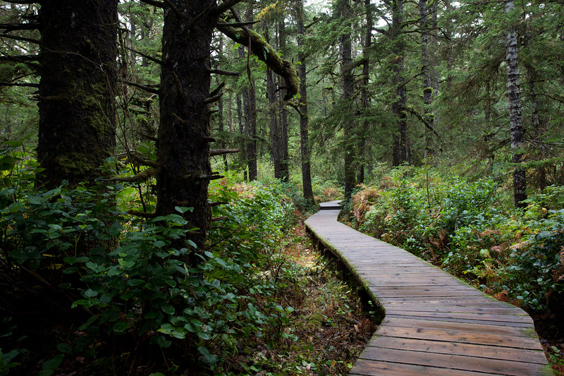 BC-2010-147: Long Beach, Vancouver Island, BC, Canada